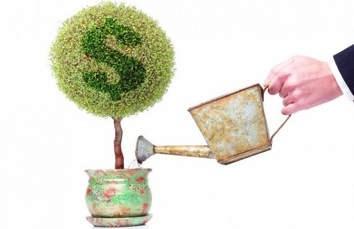 Кредитование малого бизнеса без обеспечения залогом