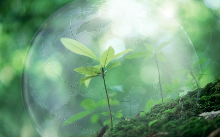Типы экологического страхования
