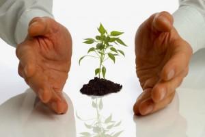 Микрокредитование малого бизнеса