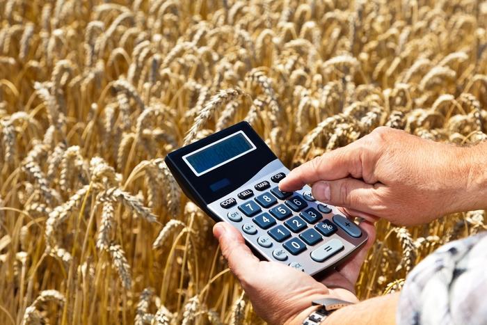 Программы государственного субсидирования фермерства