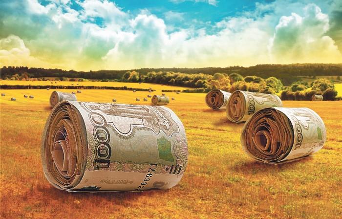 Сроки уплаты земельного налога для индивидуальных предпринимателей