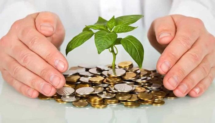 Кредитование или собственный доход?