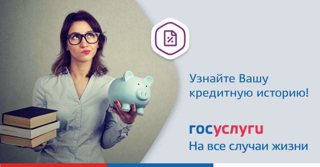 kreditnaya-istoriya-gosuslugi_11