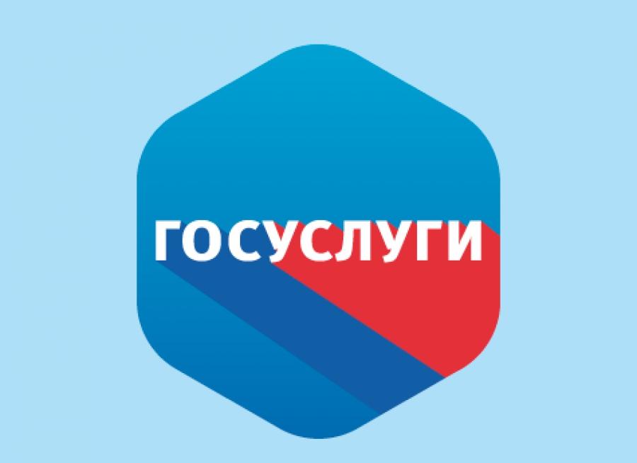 kreditnaya-istoriya-gosuslugi_6