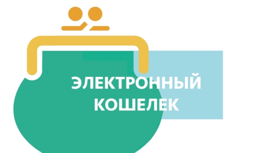zajmy-na-elektronnye-koshelki-cherez-internet-mgnovenno_18