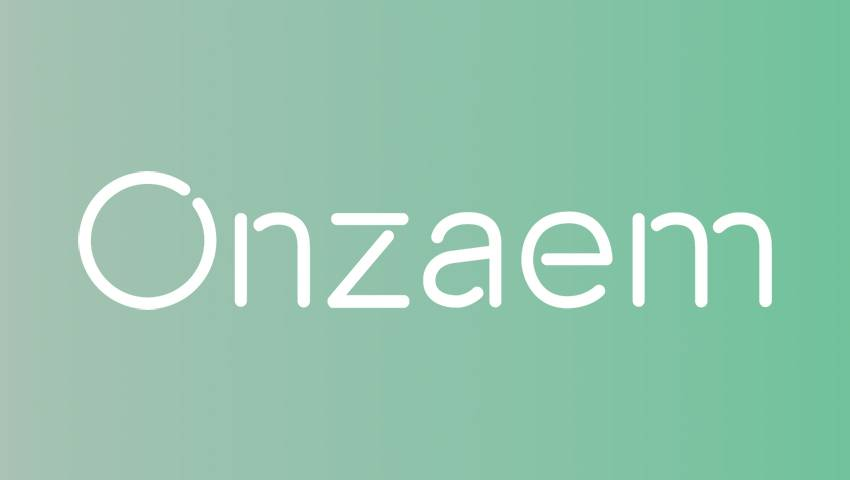 onzaem-onlajn-zajm_