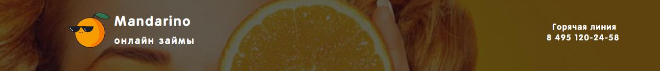 mandarino-zajm_7